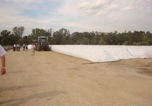 Технология закладки плющенного зерна в рукав